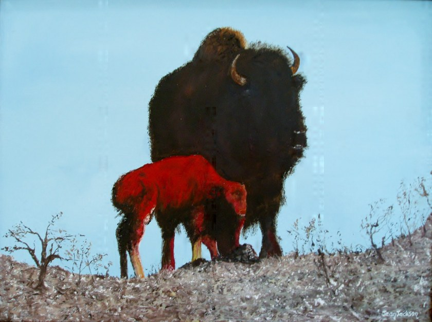 Bison and Young     Oil on canvas,  48x38x3.5cm  $290.00