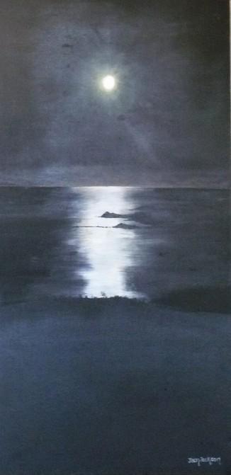 Moonlight over D'Urville Oil on Canvas 26cmWX51cmH $290