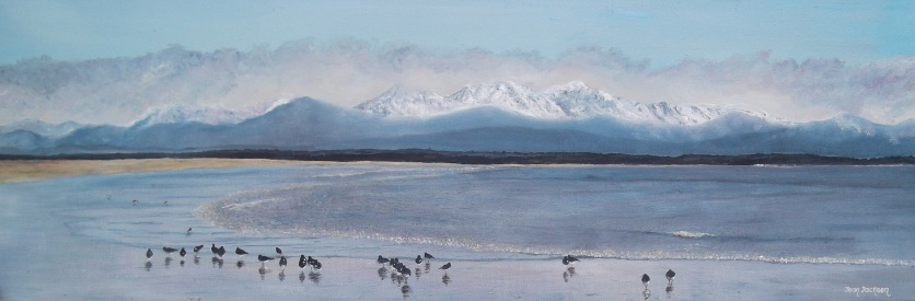 Tahunanui Beach 76cmW X 26cmH X 3.5D Oil on canvas $490 SOLD