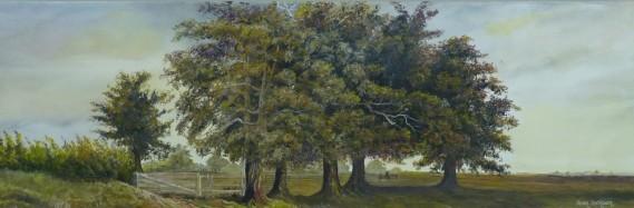 Mighty Oaks , Oil on Canvas, 76 cm x 25 cm, NZ$450.00 SOLD