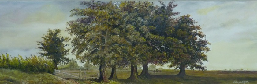 Mighty Oaks 2,  Oil on Canvas,  76 cm x 25 cm,  NZ$450.00