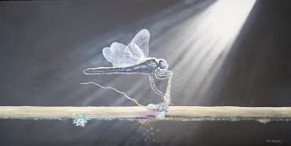 Damsel Fly Oil on Canvas 38cm W X 49cm H $490