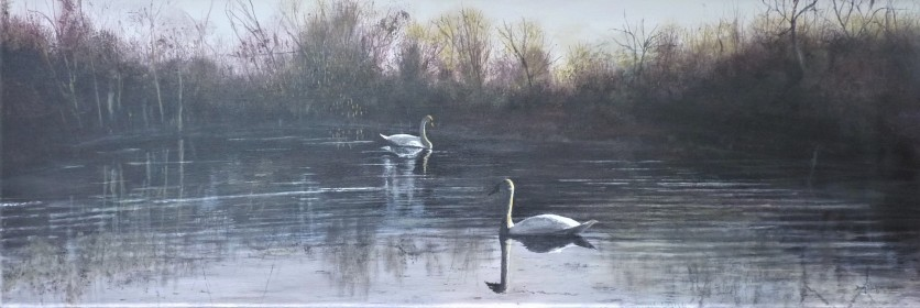 Swan Lake Oil on Canvas 91cm W X 30cm H $550